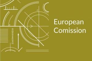 Consulta pública de la Comisión Europea